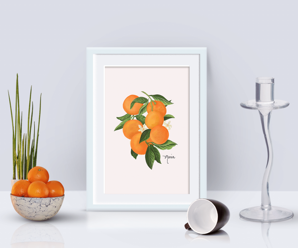 orange-illustration